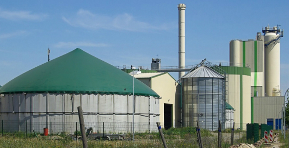 Business opportunities for sustainable biogas production