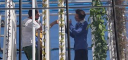 Climate-KIC start-up opens UK commercial aquaponic farm in London