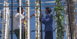 The UK's Princess Anne visited Grow Up Urban Farm's demonstration project in London on 15 April 2015.  Image: @Roofeast
