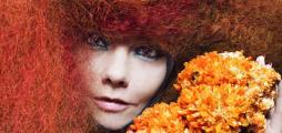 Iceland's Björk is transforming environmental education in Europe