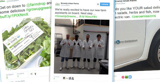 Watch one of London's first commercial urban farms grow in 10 tweets