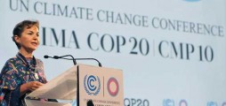 Business pushes for more action for a low-carbon economy at UN climate summit
