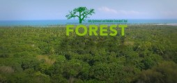 Climate-KIC Spark! Lecture: focus on FOREST further to Paris agreement