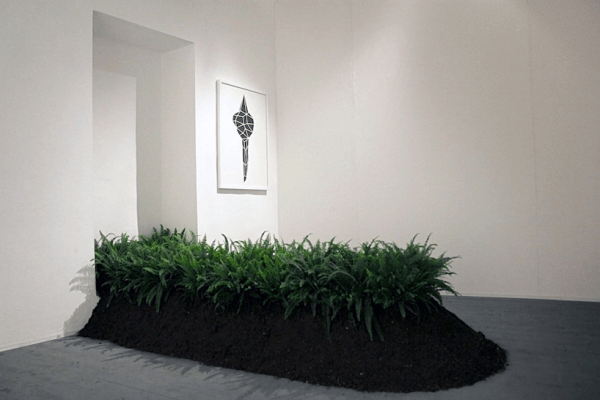 Installation made of ferns showing how they can remove metal pollutants from soil.